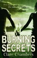 Burning Secrets (Paperback)
