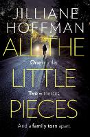 All the Little Pieces (Paperback)