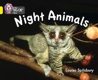 Night Animals: Band 03/Yellow - Collins Big Cat (Paperback)