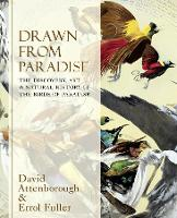 Drawn From Paradise: The Discovery, Art and Natural History of the Birds of Paradise (Hardback)