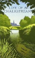 Life of a Chalkstream (Hardback)