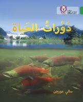 Life Cycles: Level 15 - Collins Big Cat Arabic Reading Programme (Paperback)