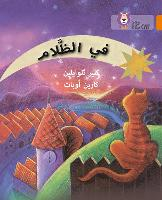 In the Dark: Level 6 - Collins Big Cat Arabic Reading Programme (Paperback)