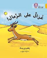 Gazelle on the Sand: Level 9 - Collins Big Cat Arabic Reading Programme (Paperback)