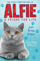 Alfie Far From Home (Paperback)