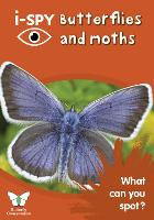 i-SPY Butterflies and Moths: What Can You Spot? - Collins Michelin i-SPY Guides (Paperback)