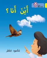 Where am I?: Level 3 - Collins Big Cat Arabic Reading Programme (Paperback)