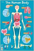 Human Body - Collins Children's Poster