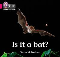 Is it a Bat?: Band 01b/Pink B - Collins Big Cat Phonics for Letters and Sounds (Paperback)