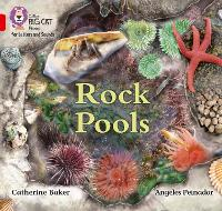 Rock Pools: Band 02b/Red B - Collins Big Cat Phonics for Letters and Sounds (Paperback)