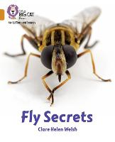 Fly Secrets: Band 06/Orange - Collins Big Cat Phonics for Letters and Sounds (Paperback)