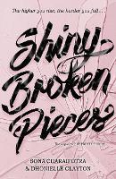 Shiny Broken Pieces (Paperback)