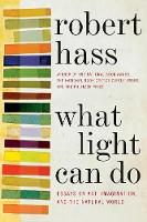 What Light Can Do: Essays on Art, Imagination, and the Natural World (Paperback)