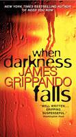 When Darkness Falls (Paperback)