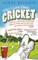 What I Love About Cricket: One Man's Vain Attempt to Explain Cricket to a Teenager who Couldn't Give a Toss (Paperback)