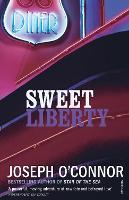 Sweet Liberty: Travels in Irish America (Paperback)