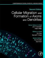 Cellular Migration and Formation of Axons and Dendrites: Comprehensive Developmental Neuroscience (Hardback)