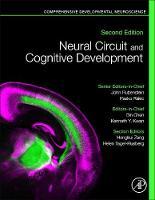 Neural Circuit and Cognitive Development: Comprehensive Developmental Neuroscience (Hardback)