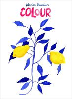 Colour (Hardback)