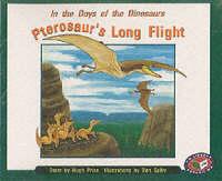 Pterosaur's Long Flight (x6) PM Orange Set B