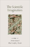 The Scientific Imagination (Hardback)