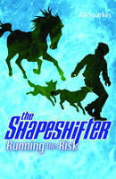 Running the Risk: the Shapeshifter 2