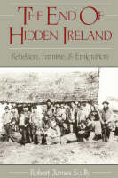 The End of Hidden Ireland: Rebellion, Famine, and Emigration (Paperback)