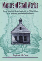 Masters of Small Worlds: Yeoman Households, Gender Relations, and the Political Culture of the Antebellum South Carolina Low Country (Paperback)