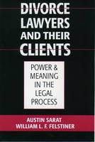 Divorce Lawyers and Their Clients: Power and Meaning in the Legal Process (Paperback)