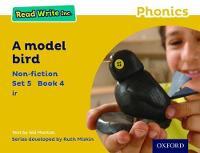 Read Write Inc. Phonics: Yellow Set 5 Non-fiction 4 A Model Bird - Read Write Inc. Phonics (Paperback)
