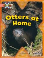 Project X: My Home: Otters at Home (Paperback)