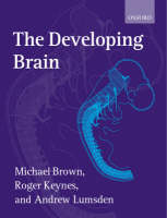 The Developing Brain (Paperback)
