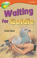Oxford Reading Tree: Level 13: Treetops Stories: Waiting for Goldie (Paperback)