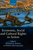 Economic, Social, and Cultural Rights in Action (Hardback)