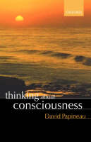 Thinking about Consciousness (Paperback)