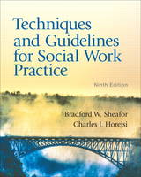 Techniques and Guidelines for Social Work Practice: United States Edition (Paperback)