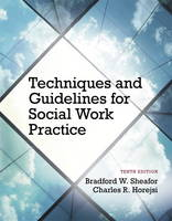 Techniques and Guidelines for Social Work Practice (Paperback)