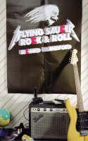 Flying Saucer Rock 'n' Roll (Paperback)