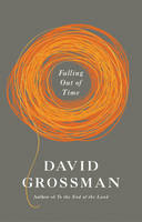 Falling Out of Time (Hardback)