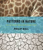 Patterns in Nature: Why the Natural World Looks the Way it Does (Hardback)