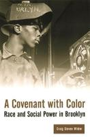 A Covenant with Color: Race and Social Power in Brooklyn - Columbia History of Urban Life (Paperback)