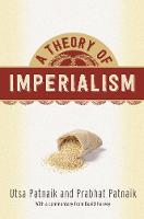 A Theory of Imperialism (Hardback)