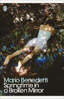 Springtime in a Broken Mirror - Penguin Modern Classics (Paperback)