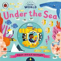 Little World: Under the Sea: A push-and-pull adventure - Little World (Board book)