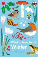 What to Look For in Winter - A Ladybird Book (Hardback)