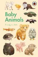 A Ladybird Book: Baby Animals - A Ladybird Book (Hardback)