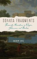 Sonata Fragments: Romantic Narratives in Chopin, Schumann, and Brahms - Musical Meaning and Interpretation (Hardback)