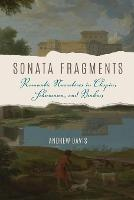 Sonata Fragments: Romantic Narratives in Chopin, Schumann, and Brahms - Musical Meaning and Interpretation (Paperback)