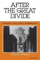 After the Great Divide: Modernism, Mass Culture, Postmodernism - Theories of Representation and Difference (Paperback)