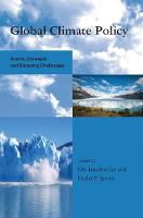 Global Climate Policy: Actors, Concepts, and Enduring Challenges - Global Environmental Accord: Strategies for Sustainability and Institutional Innovation (Hardback)